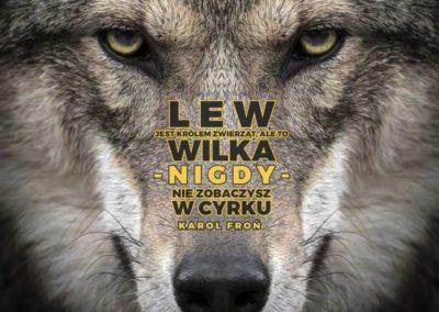 11-Lew-jest-krolem-zwierzat-ale-to-wilka-nigdy-nie-zobaczysz-w-cyrku
